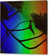 Rainbows And Stary Clouds Canvas Print