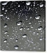 Raindrops  1 Canvas Print