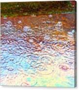 Raindrops 6877 Canvas Print