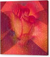 Raindrops On A Beautiful Rosebud Canvas Print