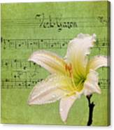 Raindrops On Lily Canvas Print