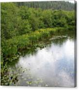 Raindrops On The Little Spokane Canvas Print