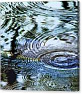 Raindrops On Water Canvas Print