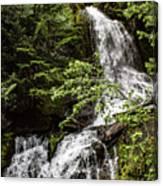 Rainforest Falls Canvas Print
