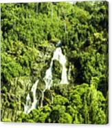 Rainforest Rapids Canvas Print