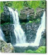 Rainforest Waterfalls Canvas Print