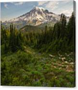 Rainier And Majestic Meadows Of Wildflowers Canvas Print