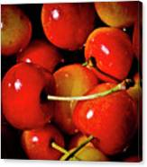 Rainier Cherries Canvas Print
