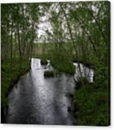 Rainy River. Koirajoki Canvas Print