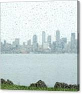 Rainy Skyline D040 Canvas Print