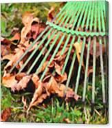 Raking The Fallen Autumn Leaves Canvas Print