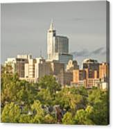 Raleigh Nc Panoramic Canvas Print