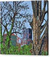 Raleigh - View From Chavis Park Canvas Print