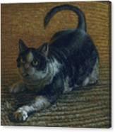 Ralphie Canvas Print