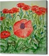 Ramonas Poppies Canvas Print