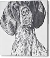 Ramsay Canvas Print