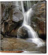Ramsey Cascades In Great Smoky Mountains National Park Tennesee Canvas Print