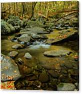 Ramsey Cascades Trailhead Canvas Print