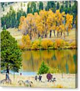 Ranch Pond In Autumn Canvas Print