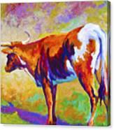 Range Rover II - Texas Longhorn Canvas Print