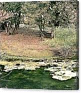 Ranthambore Canvas Print