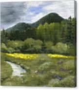 Rapid Creek Canvas Print