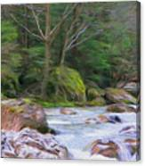Rapids At The Rivers Bend Canvas Print