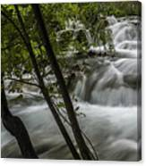 Rapids In Forest  Canvas Print