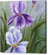 Rapsody Iris Canvas Print