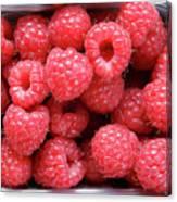 Rasberries Market Bergen Canvas Print