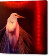 Rasberry Glow Canvas Print