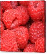 Raspberries Close-up Canvas Print