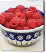 Raspberries In Polish Pottery Bowl  Canvas Print