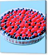 Raspberry And Blueberry Tart Canvas Print