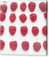 Raspberry Canvas Print