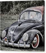 Rat Rod Beetle Canvas Print