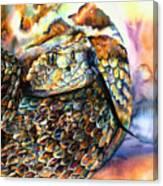 Rattle Snake Canvas Print