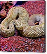 Rattlesnake In Abstract Canvas Print
