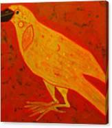 Raven Close Up Canvas Print
