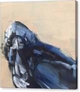 Raven Stare Canvas Print