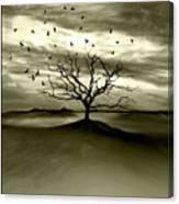 Raven Valley Canvas Print