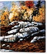 Raw North Canvas Print