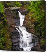 Raymondskill Falls Canvas Print