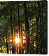 Rays Of Dawn Canvas Print