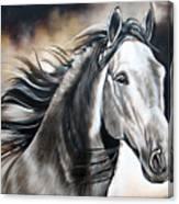 Razor Canvas Print