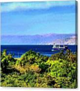 Rea Sea Aqaba Canvas Print