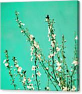 Reach - Botanical Wall Art Canvas Print