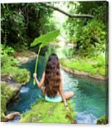 Reach Falls River Canvas Print