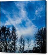 Reaching For Blue Canvas Print
