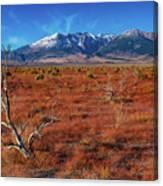 Read Fields Eastern Sierra Canvas Print